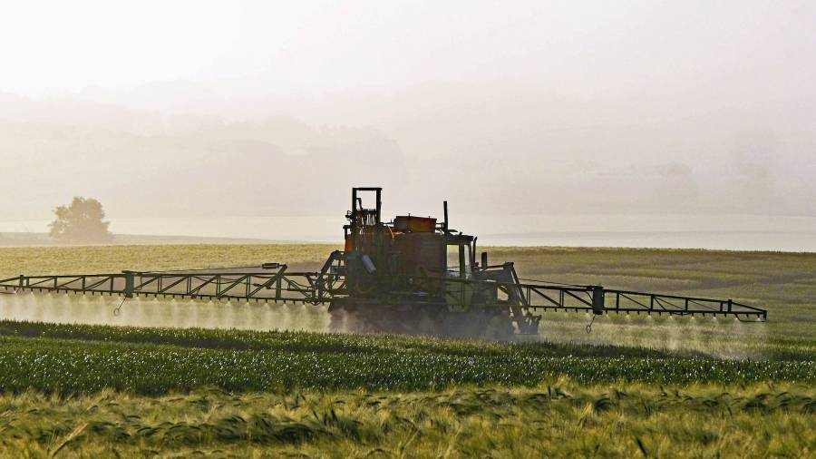When organic agriculture meets corporate interests - Via Campesina